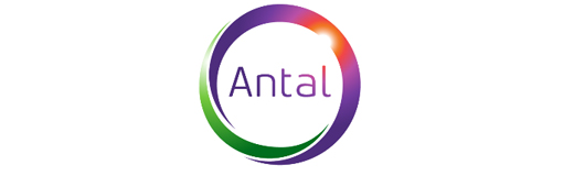 Antal International Network franchise business opportunity executive recruitment global management lucrative profitable