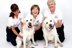 Barking Mad Franchise Group