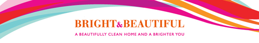 Bright and Beautiful franchise business opportunity
