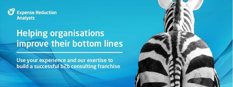 ERA Zebra banner Business Consultancy Franchise