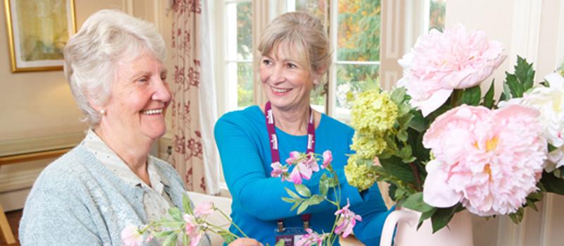 Home Instead Senior Care Ireland Franchise Business Opportunity Elderly Care Senior Residential Help Domestic Care Opportunity