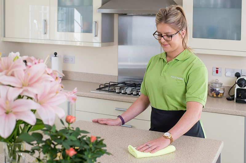 Merry Maids domestic cleaning management business franchise opportunity franchising lucrative market career job money