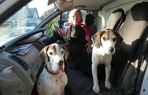 Oscars resale franchisee Clare Muir with her dog in a van