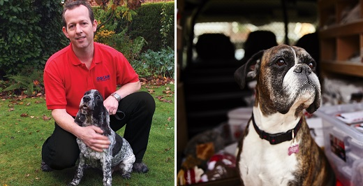 Oscars franchisee for North Nottinghamshire and a dog