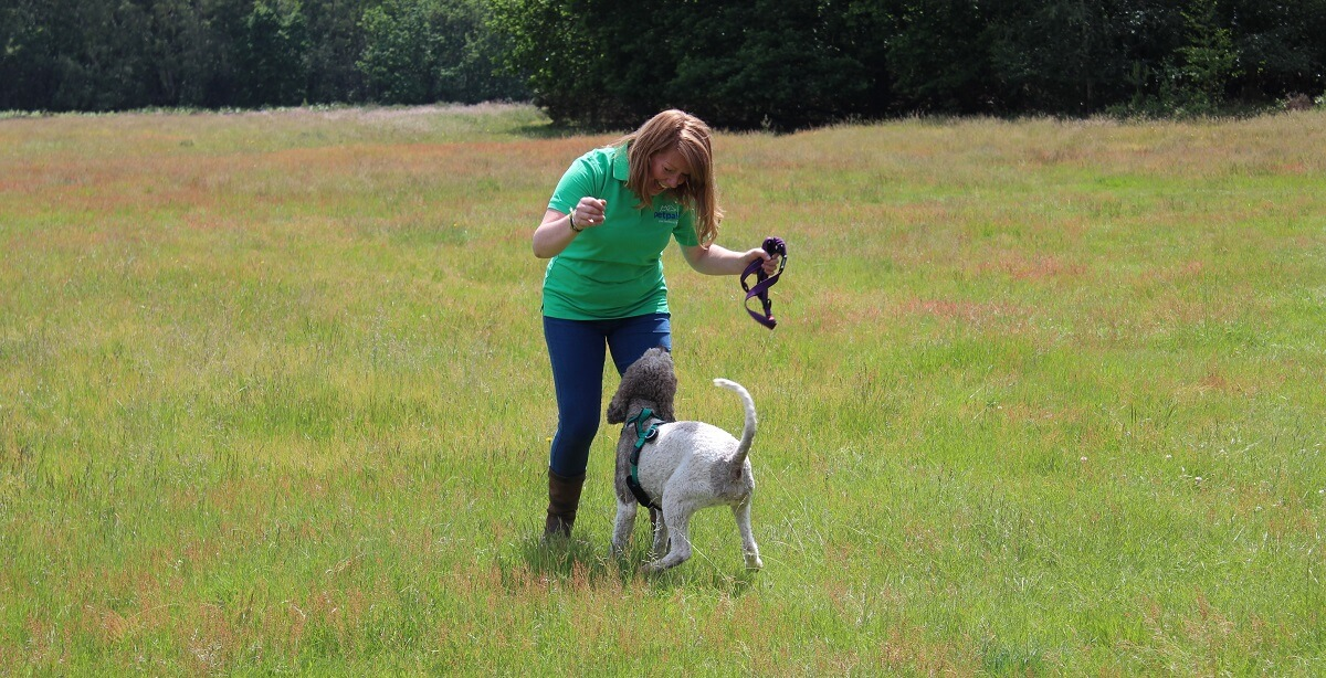 Petpals franchisee with a dog in a field