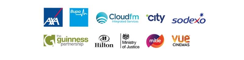 logos of companies that use Metro rod