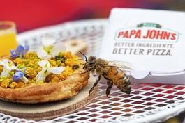 largepapa-johns-bee-pizza.jpg