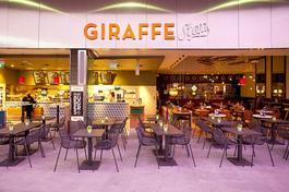 giraffe_spain.jpg